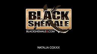 Ebony goddess Natalia is an amazing black shemale.  She has