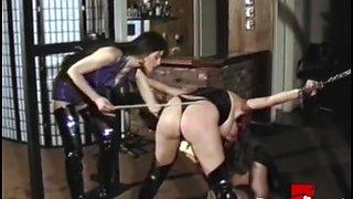 BRUCE SEVEN - Twisted Neighbors - Sarah Jane Hamilton and Alexis Payne
