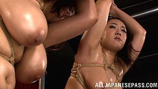 Tied up Japanese chick with big boobs getting her wet pussy licked