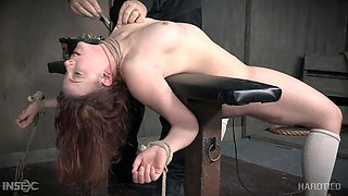 hard tied babe is covered in clamps